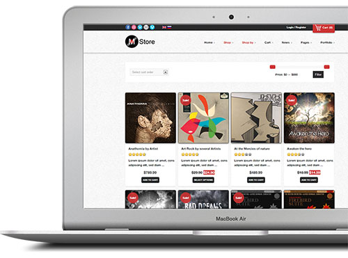 Viddictive video ads for ecom store owners