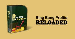 Bing Bang Profits Review